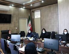 کمیته ترویج تغذیه باشیر مادر مرکز بهداشت شهرستان کرمان برگزار شد