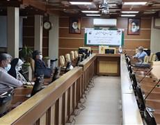 نشست وبیناری حوزه معاونت بهداشتی دانشگاه با روسای مراکز بهداشت شهرستان